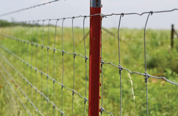 Galvanized Steel Field Fence with Steel Posts